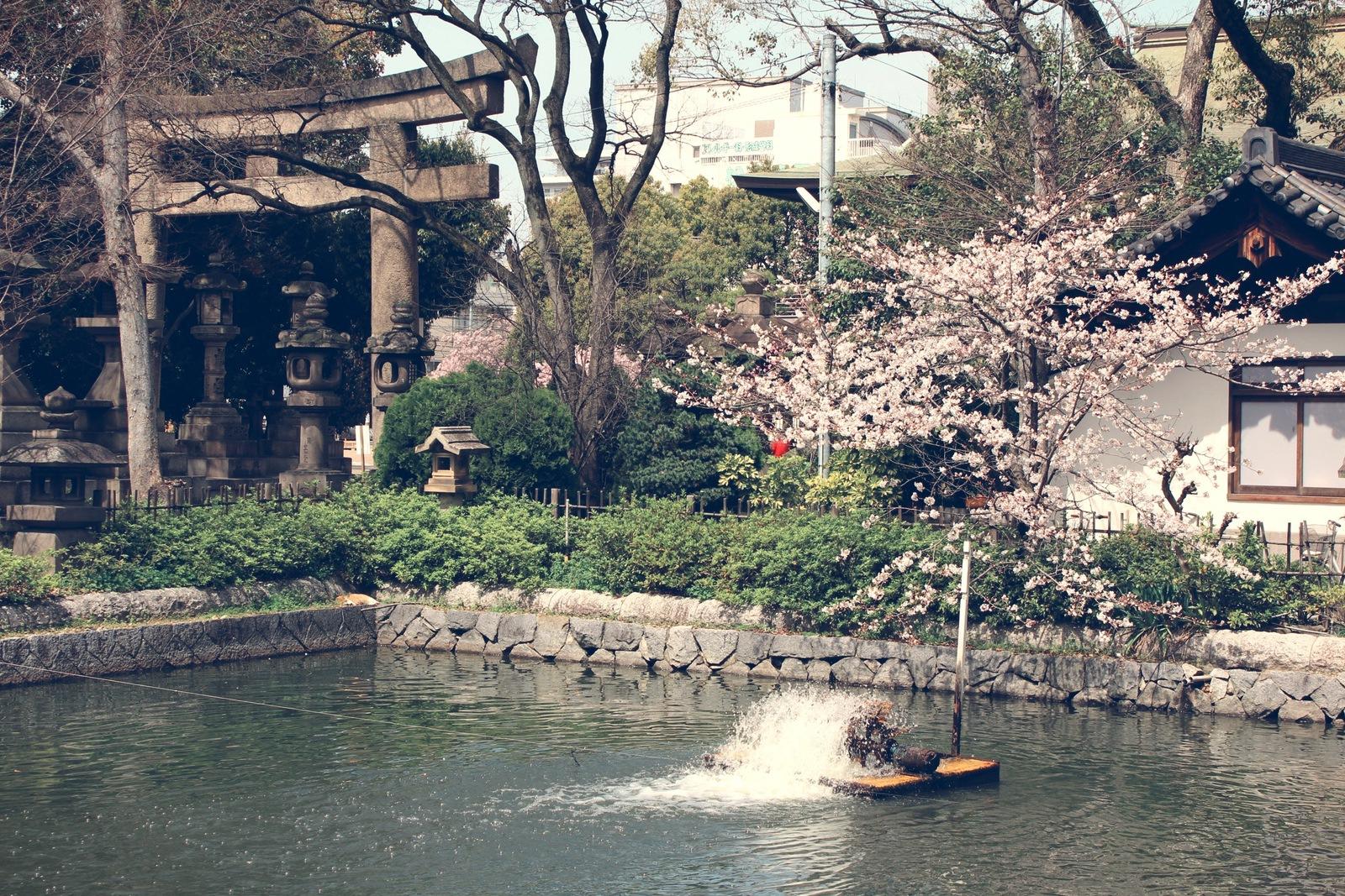 Sumiyoshi Taisha Shrine, Osaka, Japan - PearlMargaret.com