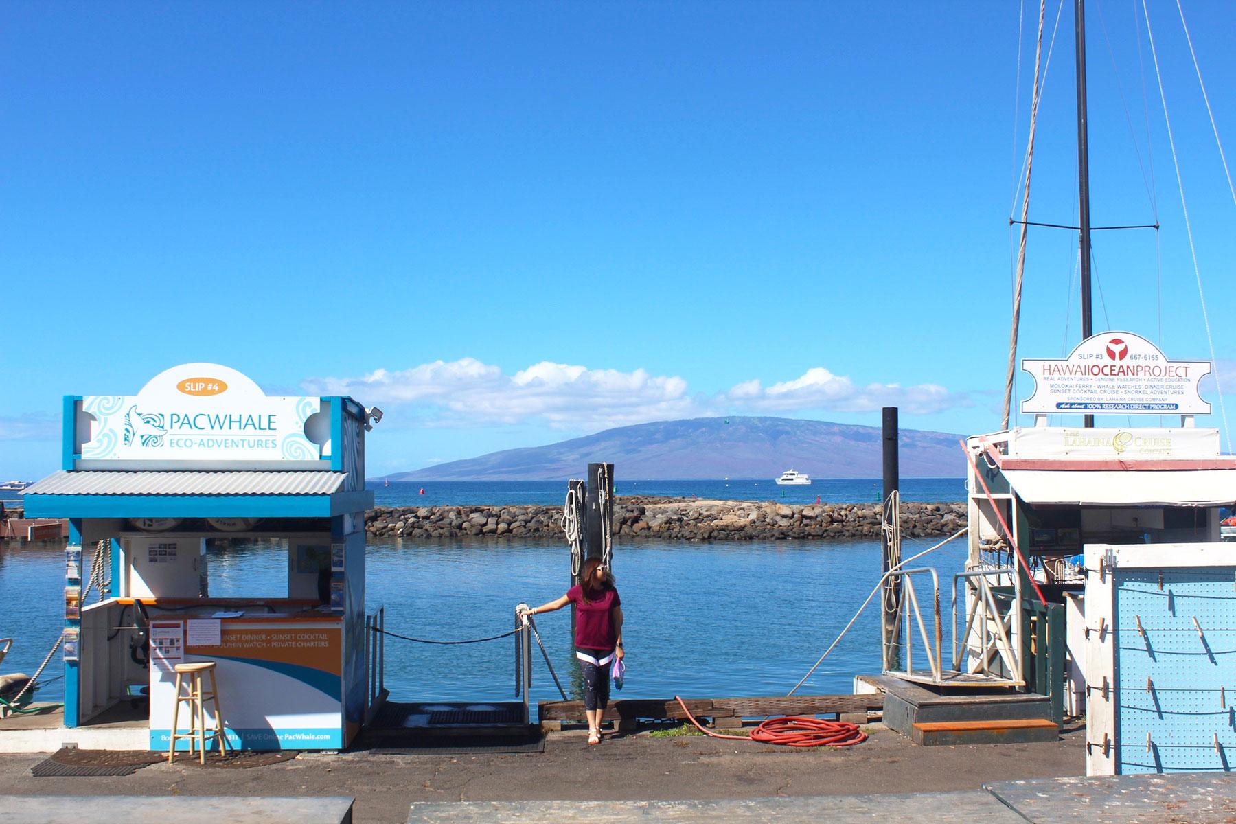 Lahaina Harbor, Maui - PearlMargaret.com