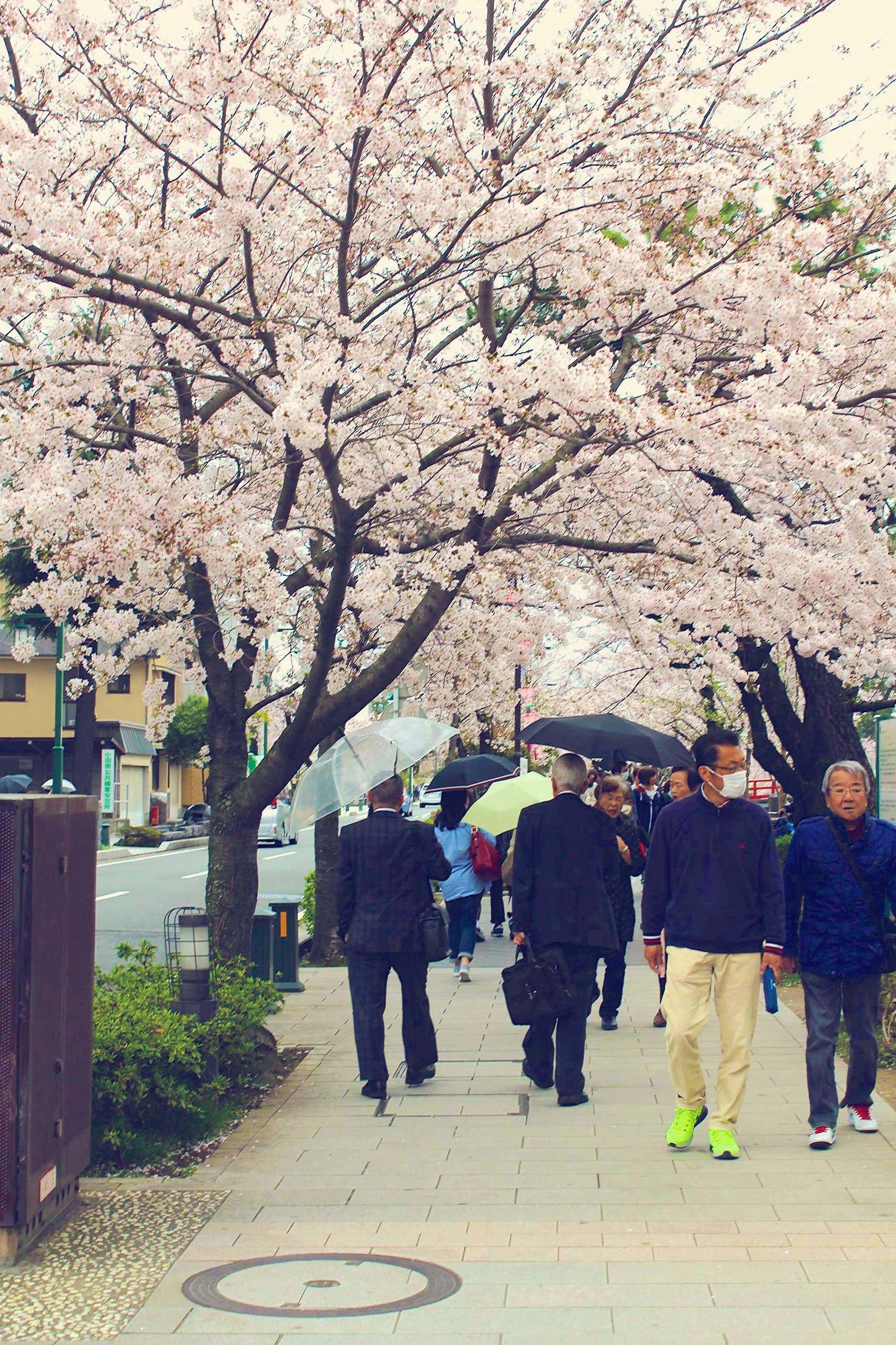 Odawara, Japan